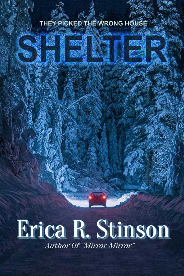 Shelter Official Cover Art